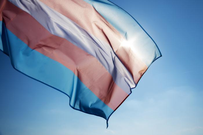 Watch: 7 Trends Impacting the Transgender Community in 2021