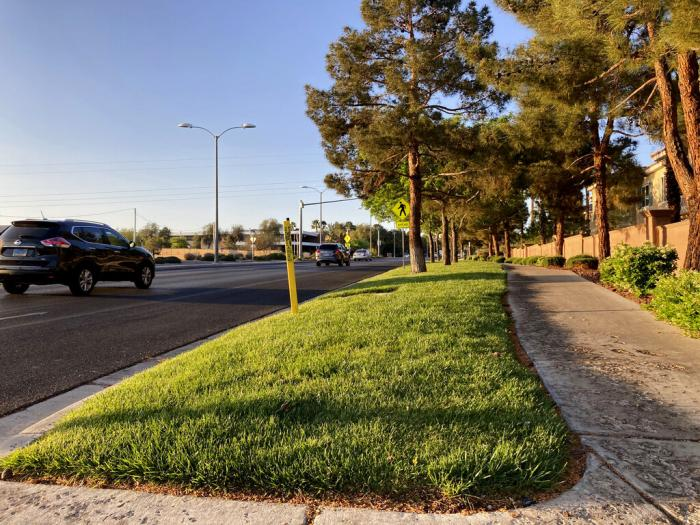 Traffic passes grassy landscape on Green Valley Parkway.