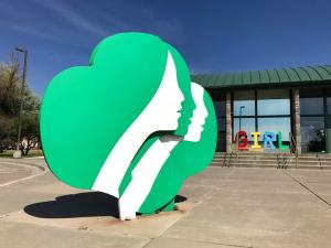 Thinner Mints: Girl Scouts Have Millions of Unsold Cookies
